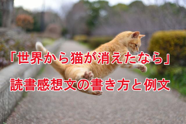 世界から猫が消えたなら 読書感想文 例文