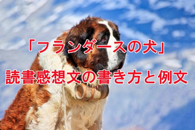 フランダースの犬 読書感想文の書き方と例文