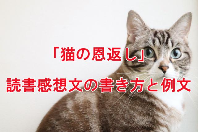 猫の恩返し 読書感想文の書き方と例文