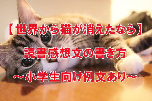 世界から猫が消えたなら 小学生向け読書感想文の例文
